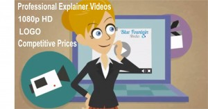 Business Explianer Video